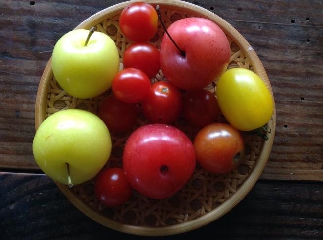 トマト&いくり